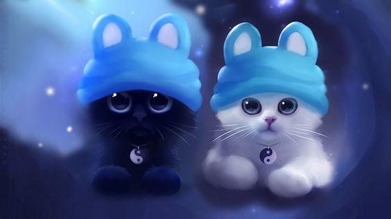 Aquarelle sur papier, chaton blanc noir Fonds d'écran - 1600x900