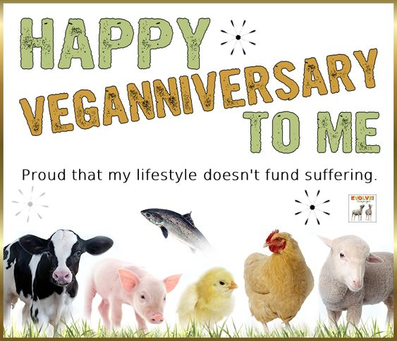And to everyone else celebrating their veganniversary in August! :-) This month marks our 14th year of being vegan. We are definitely grateful and glad that our lifestyle doesn't fund suffering. Going vegan was the best decision we ever made - our only regret is that we didn't make it many years earlier!