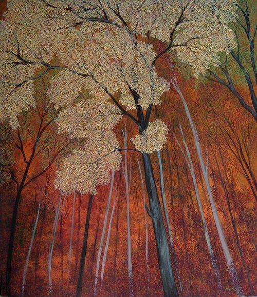 kilsoquah:    Shuvankar Maitra  Before sunset in the forest