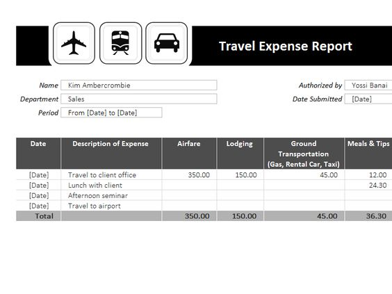 Travel Expense Report Template Templates I Love Pinterest - expense report example