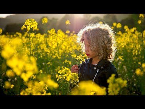 Cómo Hacer Un Retrato A Contraluz Con Un Reflector Youtube Cursos De Fotografia Retratos Aprender Fotografía
