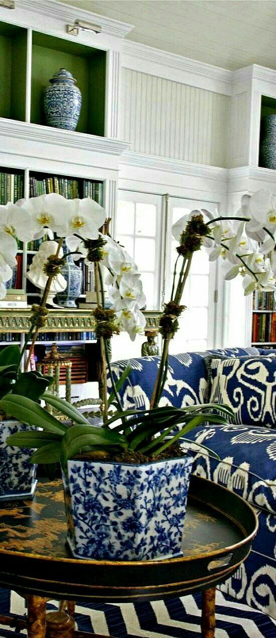 living room in blue%0A blue  u     white decor   chinoiserie       blue and white decor   Pinterest    Chinoiserie  Living rooms and Room