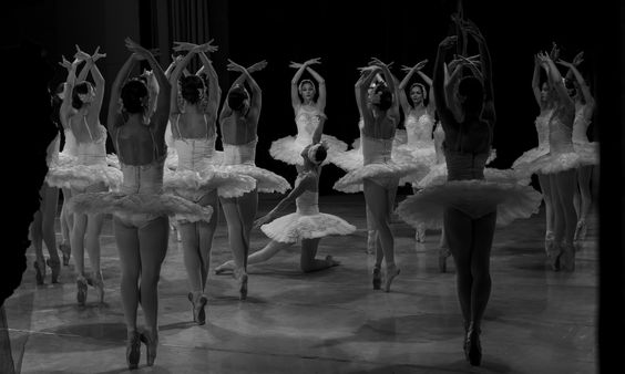 Protected - Odette protected by the swans. #Ballet_beautie #sur_les_pointes *Ballet_beautie, sur les pointes !*