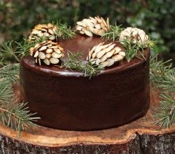 """decorated cake: How to Make Chocolate Pine Cones ... cake covered in Chocolate with almond studded chocolate fudge """"pine cones"""" ... real sprigs ...  luv the rustic look ... Thanksgiving desert alternative ..."""