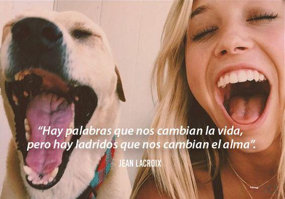 perros y felicidad!