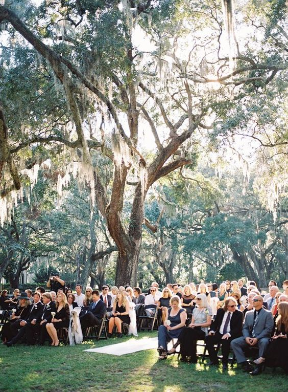 ceremony under Spanish moss | Ray Kang