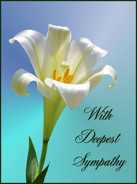 With Deepest Sympathy Greeting Card For Sale By Kristin Elmquist