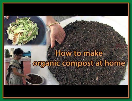 How To Make Your Organic Garden Grow