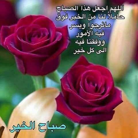 صور صباح الخير واجمل عبارات صباحية للأحبه والأصدقاء موقع مصري Good Morning Flowers Good Morning Coffee Good Morning Arabic