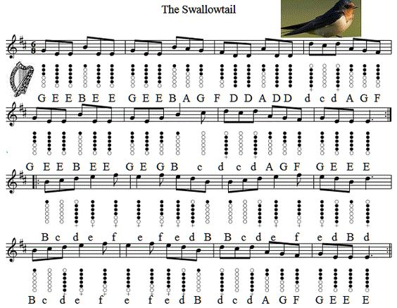 Mandolin : mandolin tabs swallowtail jig Mandolin Tabs Swallowtail Jig in Mandolin Tabs ...