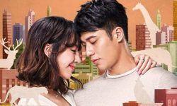 Phim Tam Trang Khi Yeu 2018