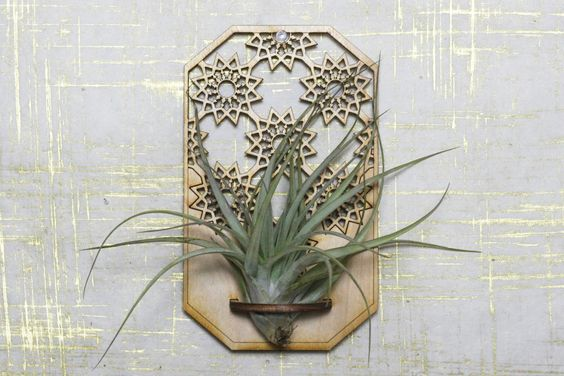 Air plant holder - geometric design - air plant hanger - houseplant - indoor garden - hanging terrarium - lasercut - air plant - home decor