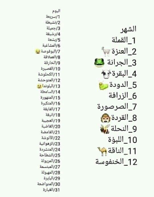 Ana 8 15 ههههه القردة المتهورة Funny Words Funny Arabic Quotes Book Qoutes
