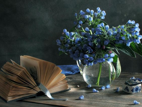 still life photography ideas home - Google Search