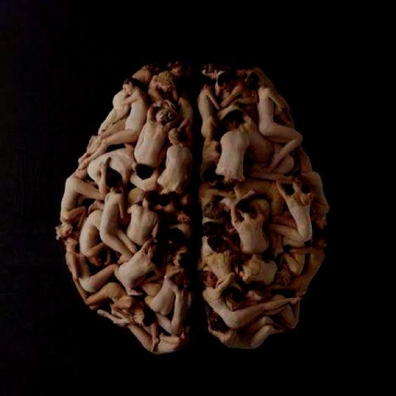 Love in the brain