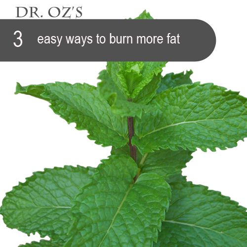Dr. Oz - 3 Simple Ways Boost Your Metabolism in Under 5 Minutes