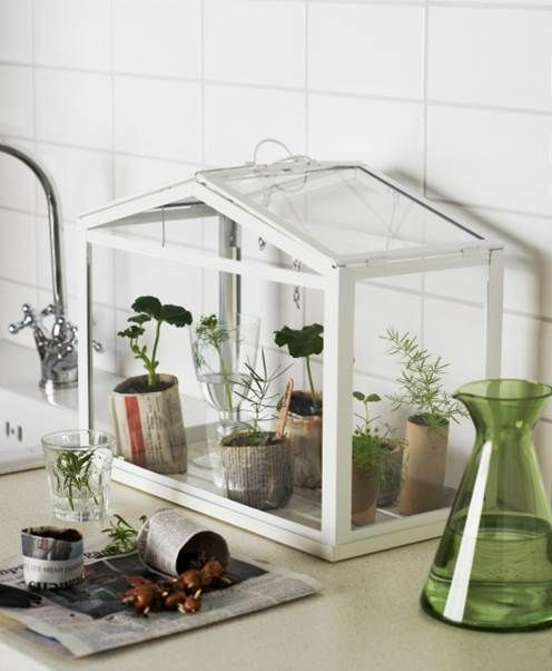 Planters greenhouses and plants on pinterest for How to make a small indoor greenhouse