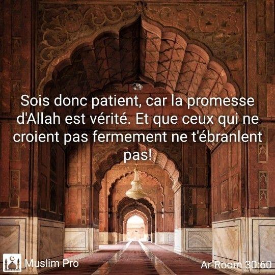 Epingle Par Agnes Choupi Sur Parol Of Allah And Hadiths Citations Musulmanes Belles Citations Islam