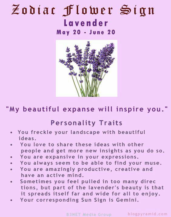 Zodiaccity Birth Flower Tattoos Birth Month Flowers Birth Flowers
