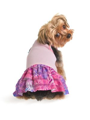 Ruffled Dog Dress by Ruffluv on Gilt Home