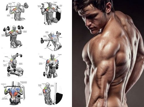 Full Shoulder Workout For Best Body In Gym Shoulder Workout Full Shoulder Workout Best Shoulder Workout