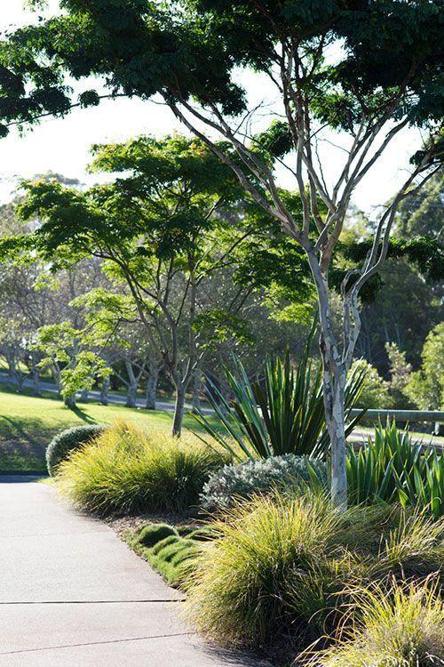 Mediterraner Garten Garden Garten Lndliche Landschaftsgestaltung Geheime Grten Mehr Australian In 2020 Australian Garden Design Landscape Design Coastal Gardens
