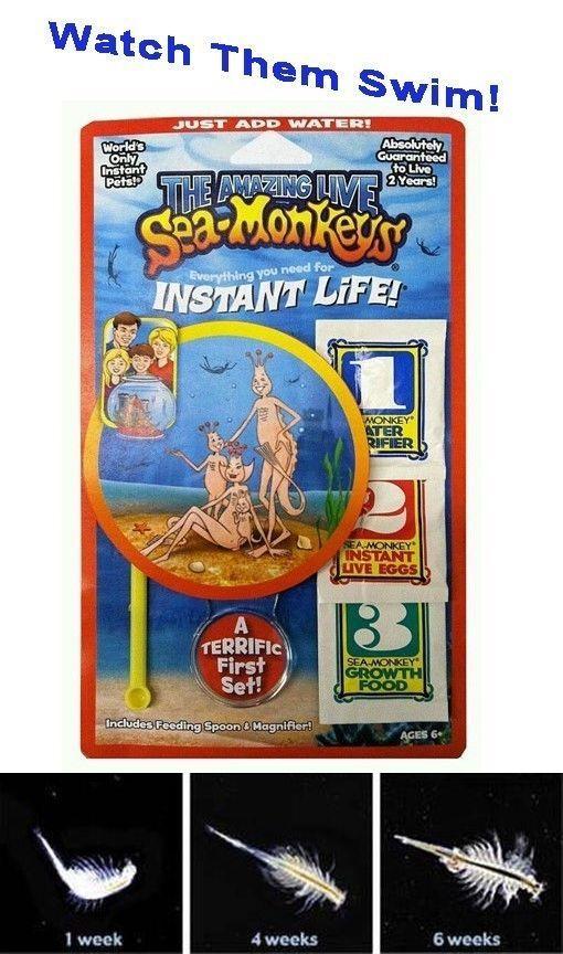 Sea Monkey Aquarium Kit Sea Monkeys Bad Gifts Gifts For Kids