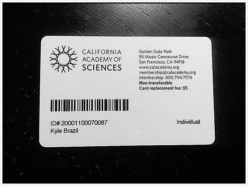 Gym Membership Card Template Luxury 6 Ways To Use The Membership Card Template Burris Free Business Card Templates Card Template Gym Membership Card