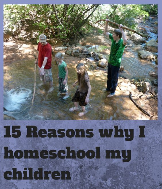 15 Reasons why I homeschool my children | Large Family Mothering