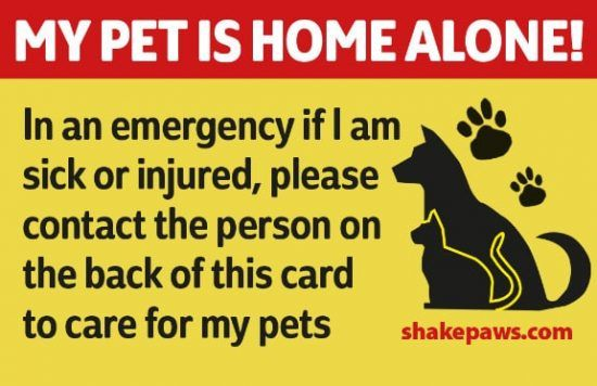 With This Pet Home Alone Card You Can Always Be Safe In The Knowledge That If You Are Ill Or Injured Thos Dog Body Language Pet Care Printables Meds For Dogs