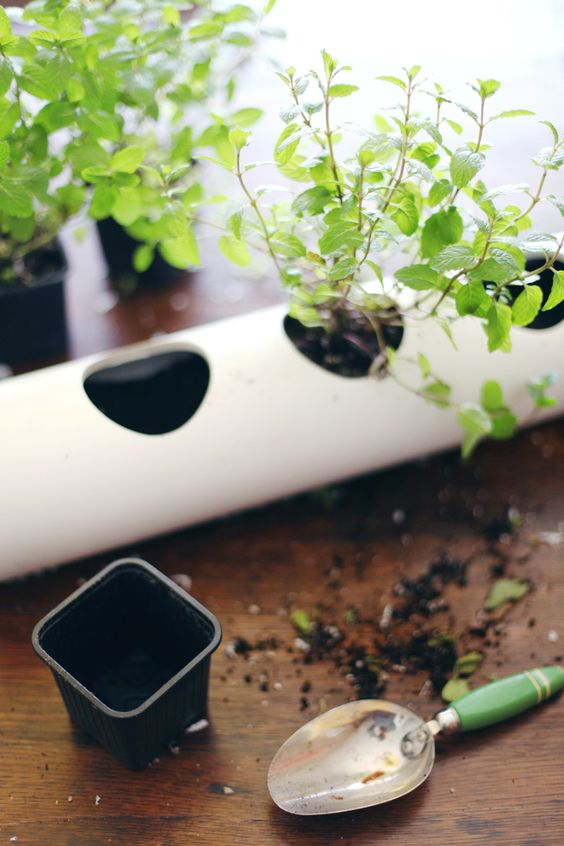 Make This Floating Pvc Planter For Growing Herbs In Your