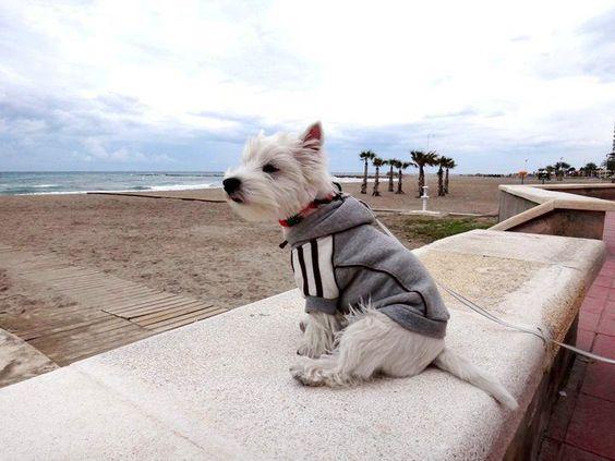 Hangin on the beach