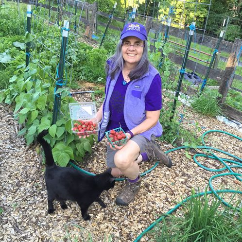 463b984ac66181a6c7cf7cae0b611f75 - How To Become A Master Gardener Maryland