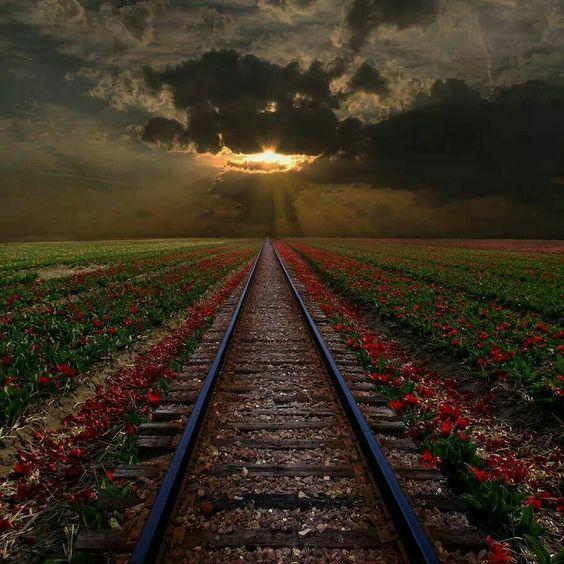Vislumbra el horizonte...