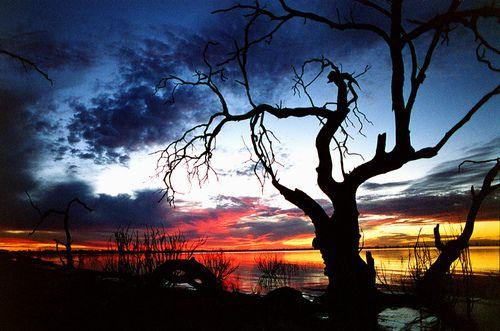last light (by steveh1998)