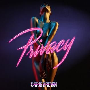 Chris Brown – Privacy acapella