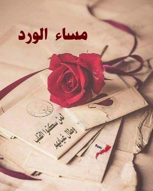 Pin Di Ali علي Su مساء الخير