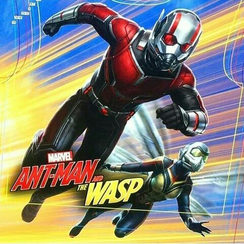 Pin By Donahia Atwood On Marvel Wasp Movie Ant Man Wasp