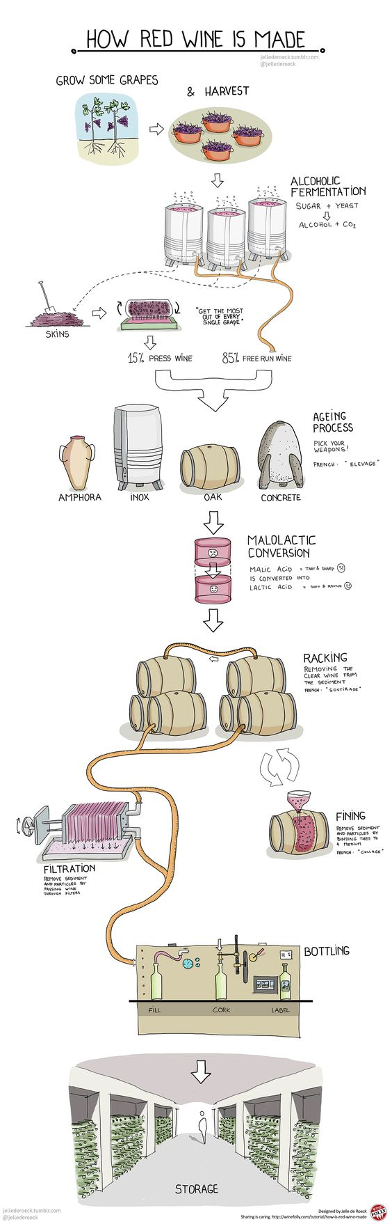 Infografía de vino - Como se hace el vino tinto Ven y cátanos en Idyllica! (http://www.idyllica.es)