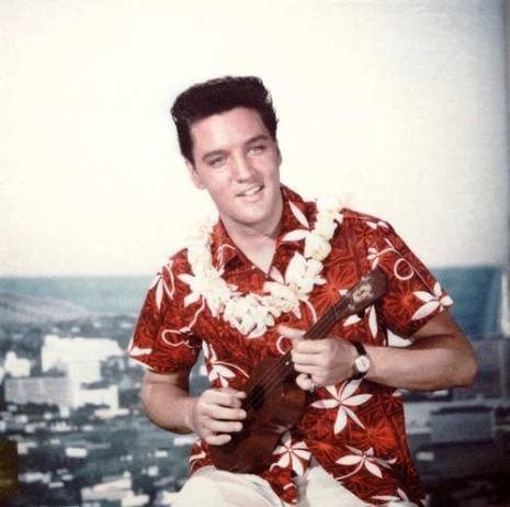 Elvie chemise hawaienne