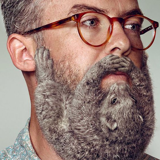 Beard as mammal? Don't mind if we do! More oddness on the blog: