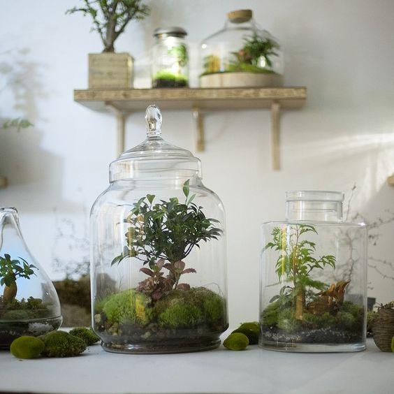 Mini-mondes #greenfactory #treeki