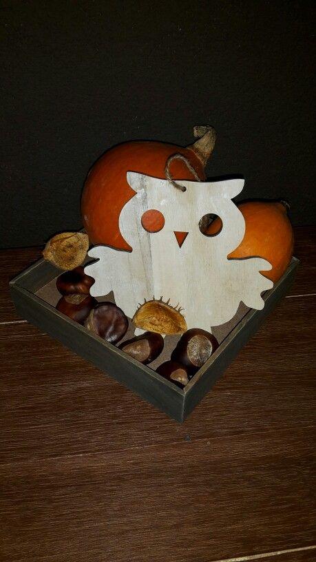 Houten schaal met pompoenen, kastanjes en een houten uil