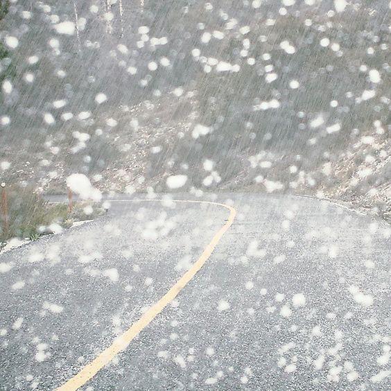 Snow falling on Wheeler Peak Road.#travel #traveling #nationalpark #landscape #neveda #weather
