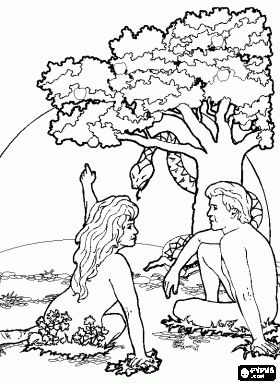 eve convinced adam to eat the fruit both adam and eve were disobedient and ignored the warning of god adam and eve catholic coloring page for the story - Adam Eve Story Coloring Pages