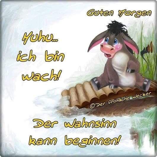 Pin Von Karin Kreft Auf Guten Morgen Schonen Tag Spruche Guten Morgen Guten Morgen Lustig