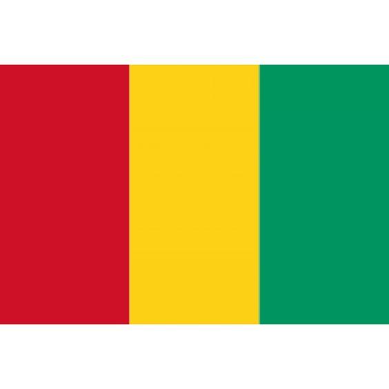 vlag Guinee, Guineese vlaggen 100x150cm De vlag van Guinee is een verticale driekleur bestaande in de kleuren rood, geel en groen. Guinee nam deze vlag aan op 10 november 1958.  Het model van de vlag is afgeleid van de Tricolore van voormalig kolonisator Frankrijk. De kleuren van de vlag zijn afkomstig van de kleuren van de Rassemblent Démocratique Africain, een overkoepelende organisatie van de op moment van aanname regerende Democratische Partij.