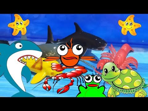 Playtime4kids Sea Animal Names More Nursery Rhymes Kids Names Cocomelon Sea Animals For Free Kindergarten Games Animals For Kids Computer Games For Kids