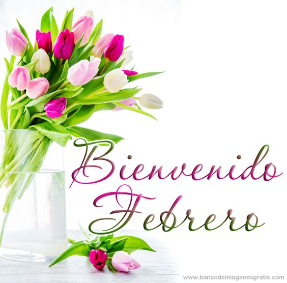 FrasesparatuMuro.com: Bienvenido Febrero 1: