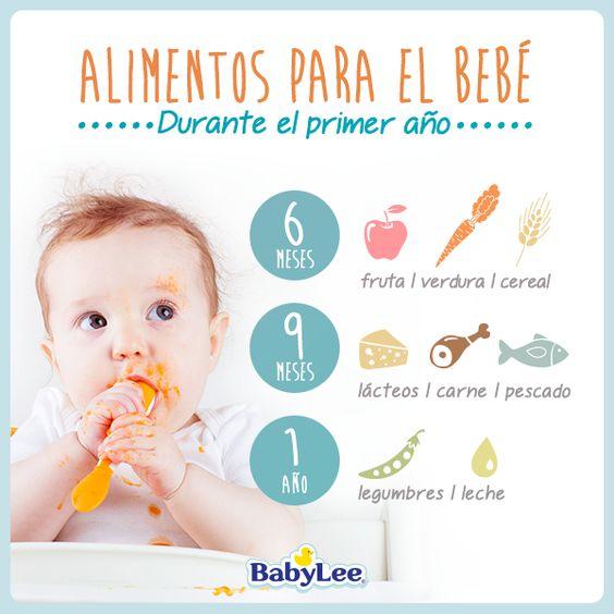 Alimentos para el bebe durante el primer a o es normal pinterest bebe and primer - Alimentos bebe 8 meses ...